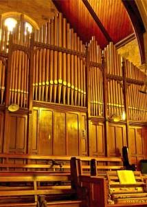 Cropped organ